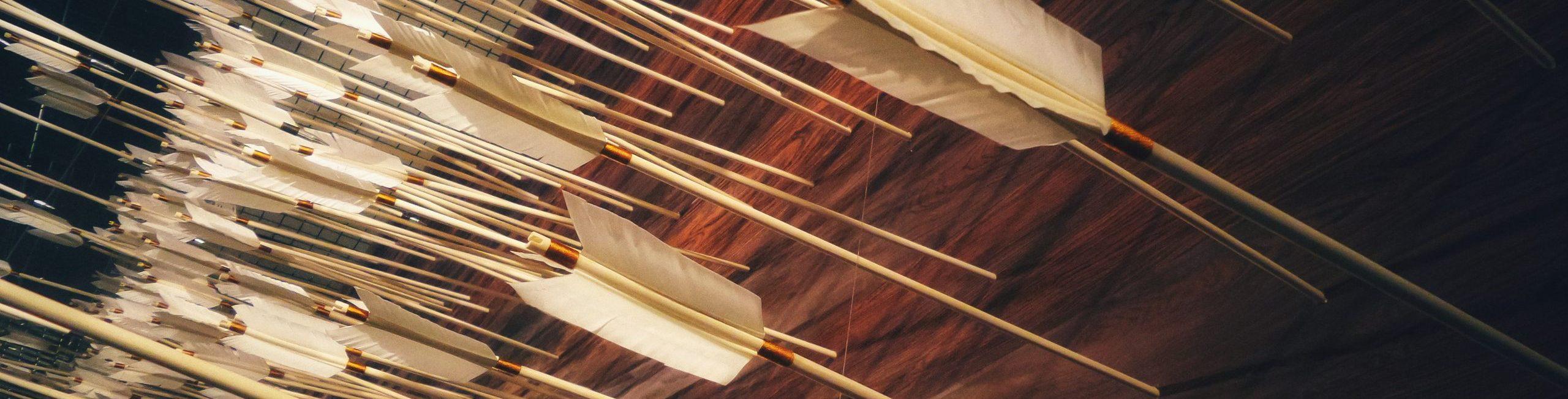 Archery Lessons in Columbia / Irmo, SC area